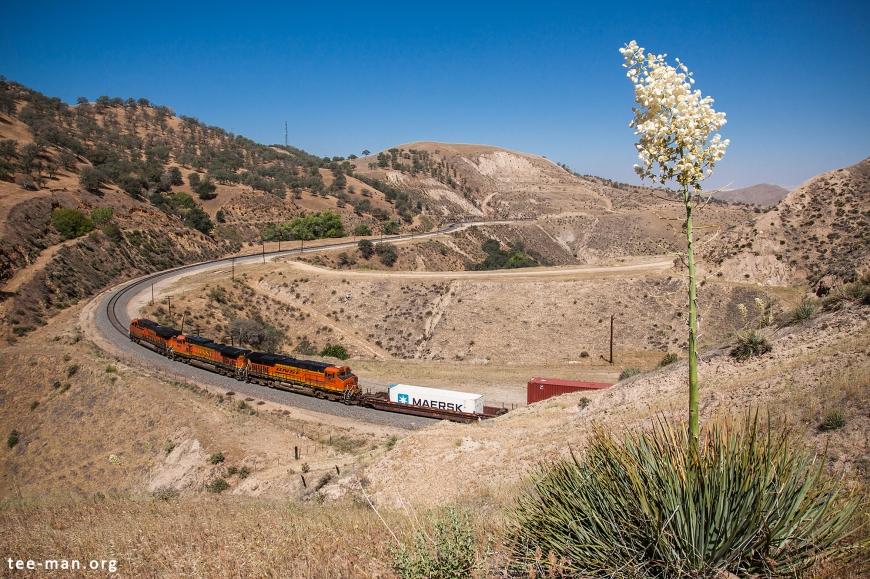 BNSF 7452 + 4812 + 7075, Bealville (CA) 26-5-2014
